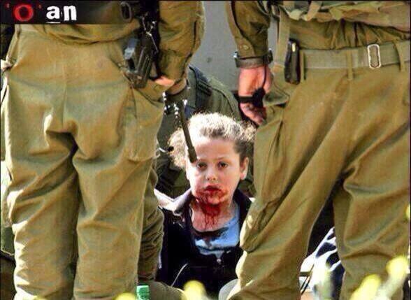 Gaza15