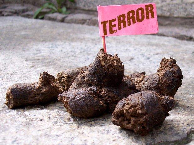 Terror ist Scheiße